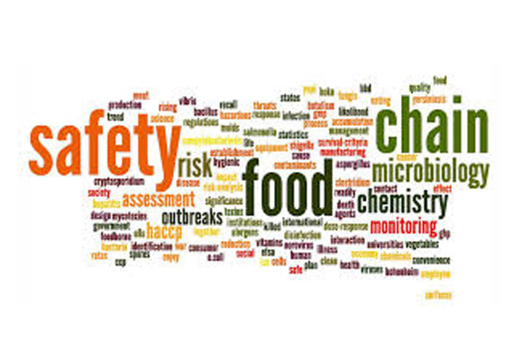 Food Safety Audits - Auditing Food Safety