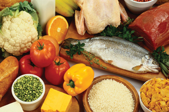 Food Safety - Auditing Food Safety